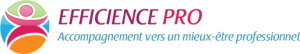 Logo EFFICIENCE PRO petit